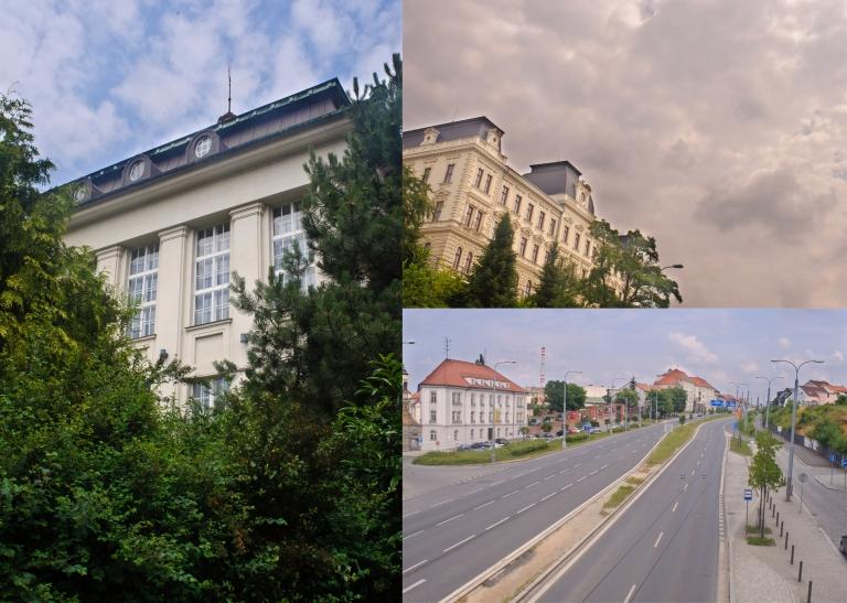 Tree Street Building