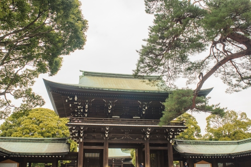 Meiji 7