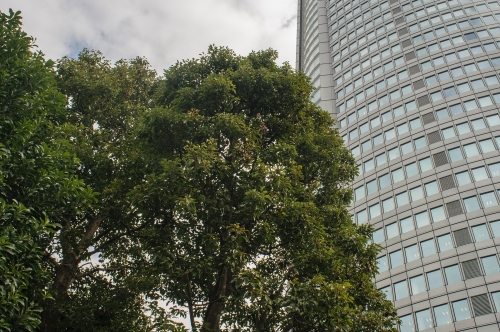 Tokyo 2