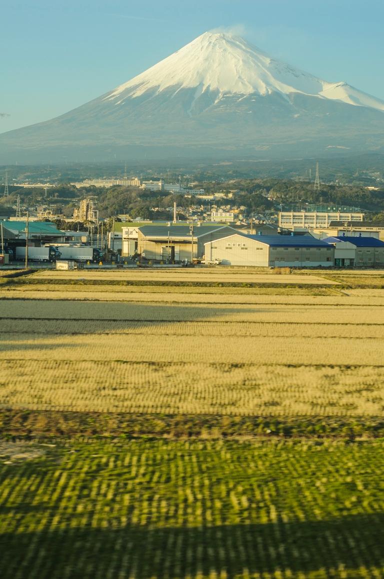 Train to Tokyo 4